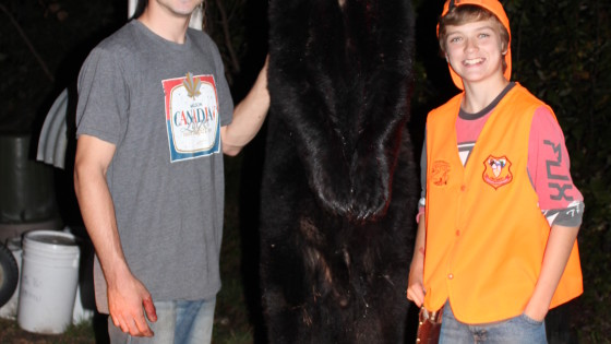 fall black bear hunting at big bear camp
