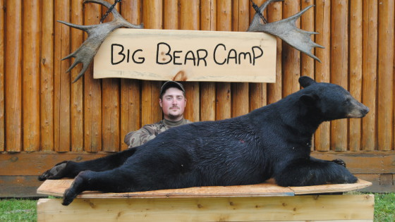 northern ontario fall black bear hunt at big bear camp