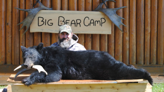 northern ontario fall black bear hunt