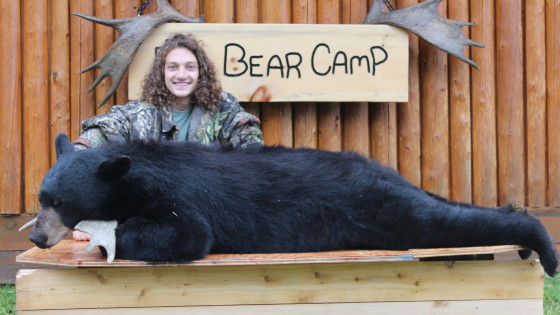 fall black bear hunts at big bear camp